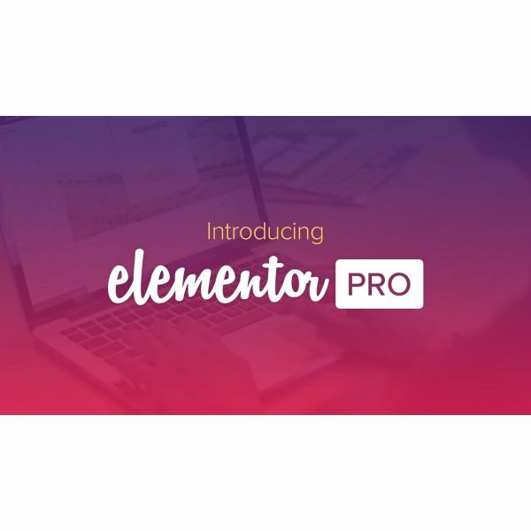 Плагин ELEMENTOR PRO для Wordpress